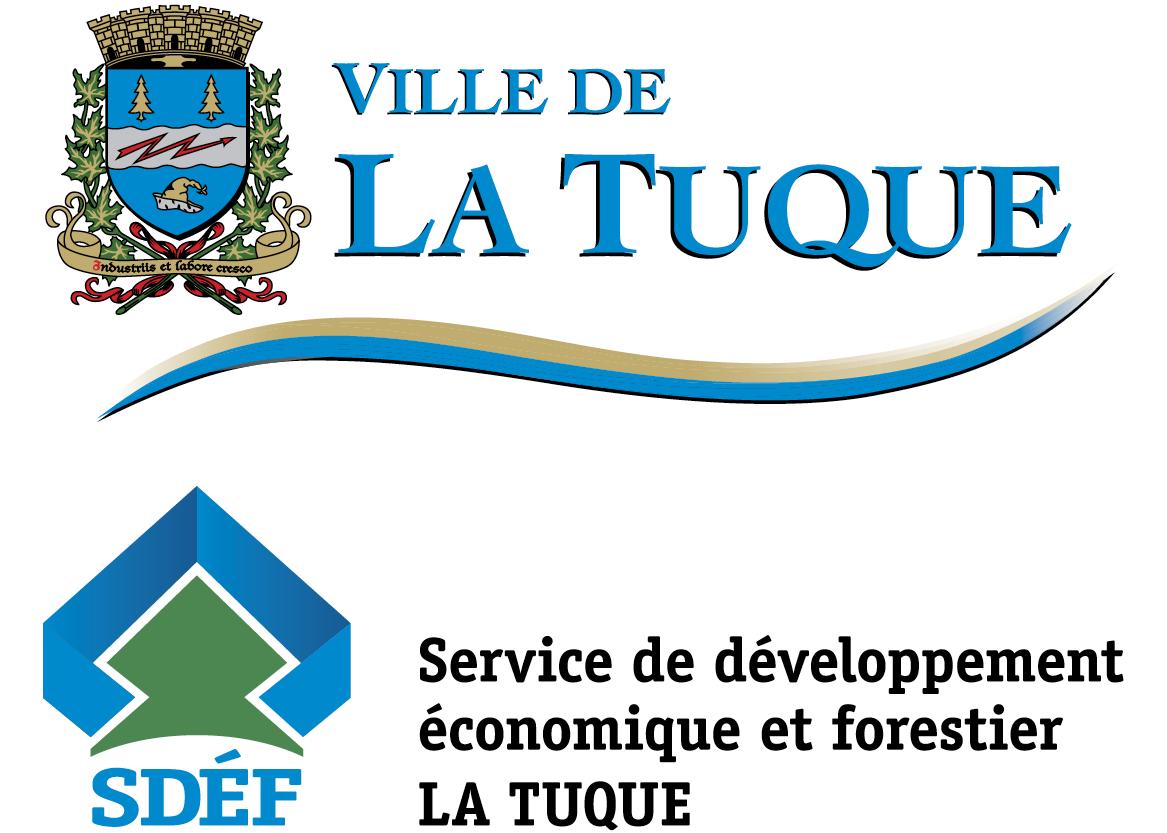 4. Ville de La Tuque - SDÉF